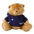 Girl Guide Bear with Hoody