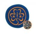 Guiding World Badge