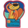 Beaver Scout Sleepover Badge