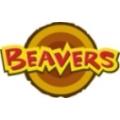Beaver Scout Pin Badge