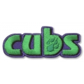 Cub Scout Fun Badge