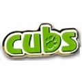 Cub Scout Pin badge